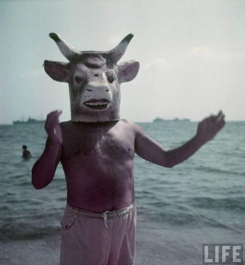 პიკასო, 1949 წ.