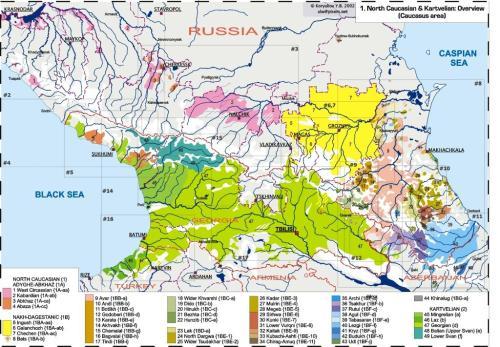კავკასიური ენების ატლასი, ქართველური ენები (Linguarium-ის მიხედვით)