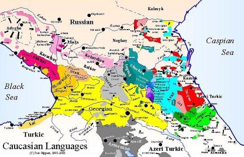 კავკასიური ენები - Jost Gippert-ის მიხედვით