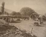 ილიას კარ-მიდამო საგურამოში