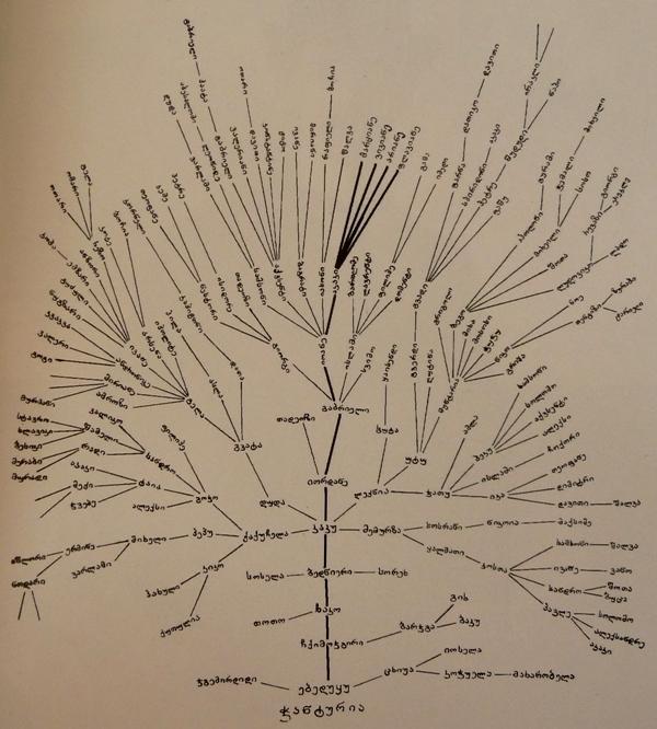 საოჯახო ხე