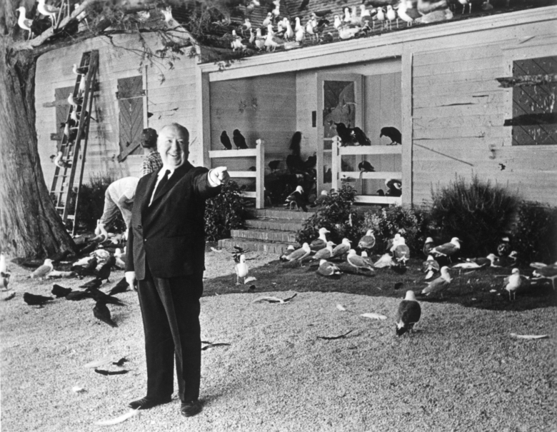 [Obrazek: alfred_hitchcock_on_the_set_of_the_birds__1963__.jpg]