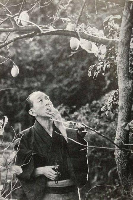 იასუძირო ოძუ - Yasujiro Ozu
